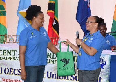 CICL Partners with OECS Summit #19