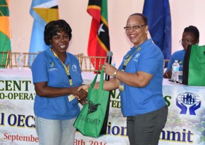 CICL Partners with OECS Summit #20
